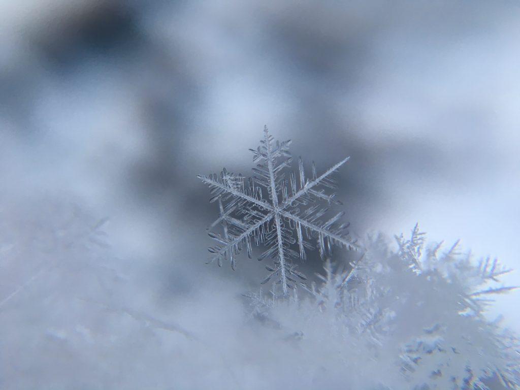 Sneeuwbal 1